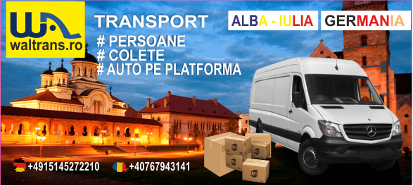 waltrans firma ta de transport persoane germania de la. Black Bedroom Furniture Sets. Home Design Ideas